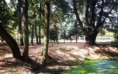 Rewaloryzacja Parku Belzackiego